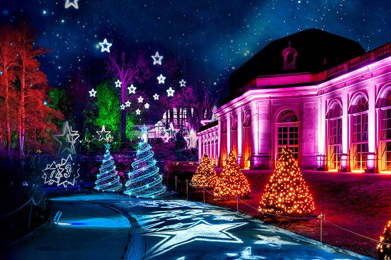 Christmas Garden Dresden