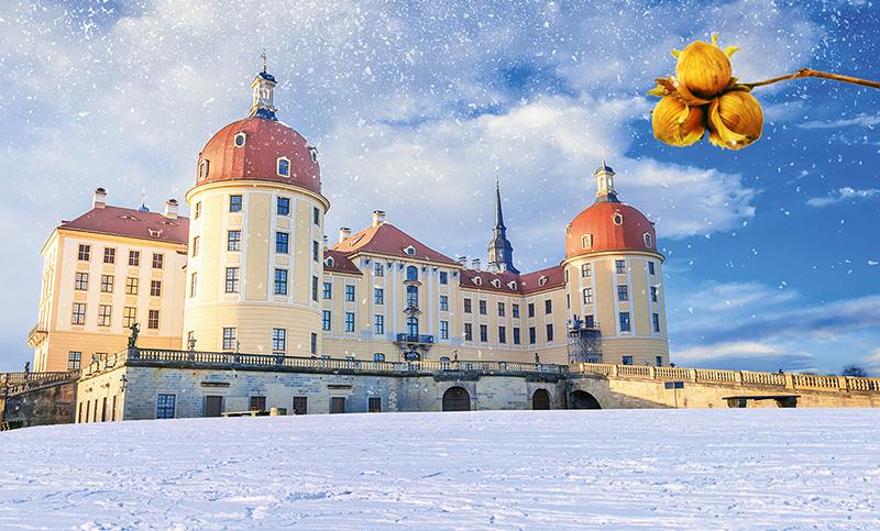 Aschenbrödel-Schloss Moritzburg und Meißen